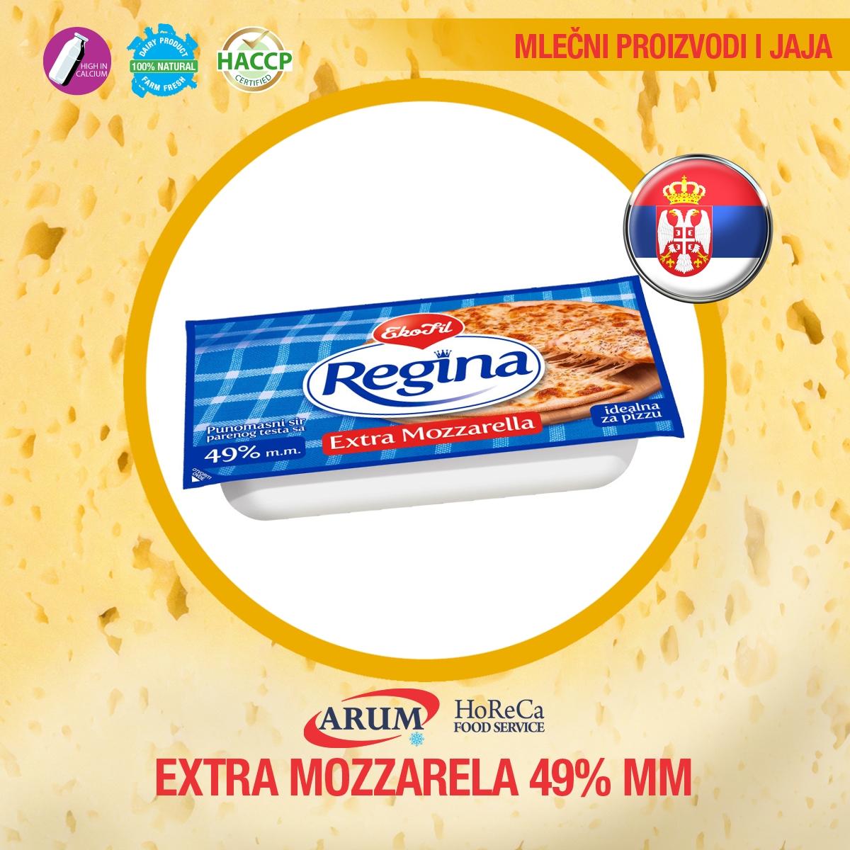 EXTRA MOZZARELA 49% mm REGINA