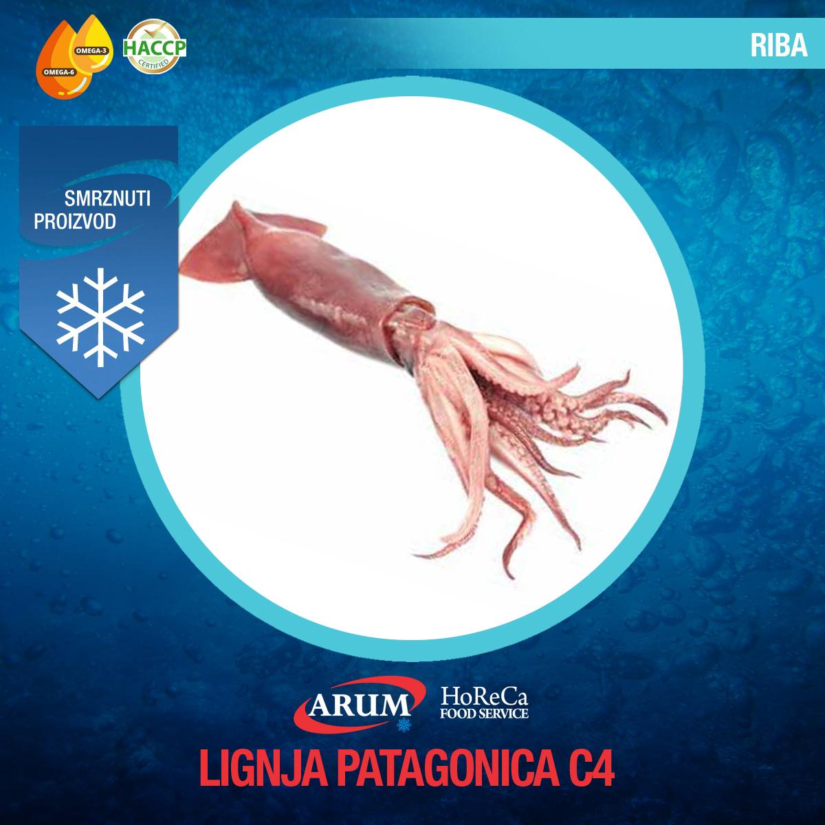 Lignja patagonika c (10-13cm) cca 12kg/1#