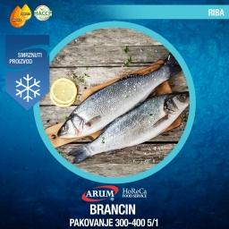 Brancin 300-400 5/1