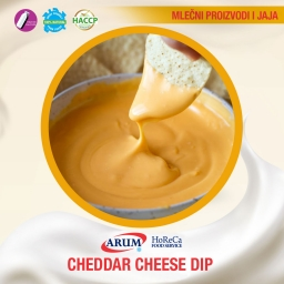 Cheddar cheese dip 1/1