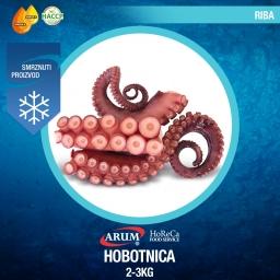 Hobotnica 2-3kg