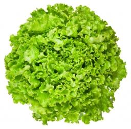 Salata bjonda
